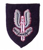 Special Air Service Issue Beret Badge